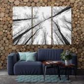 Abstract forest photo with black and white trees canvas wall decor