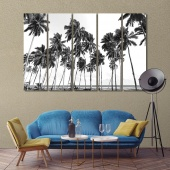 The palms trees black and white artwork design, beach  art pictures
