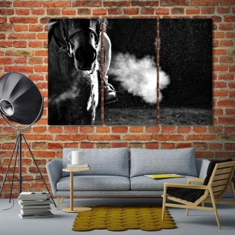 Horse black and white modern art, horse riding canvas prints art