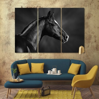 Black and white portrait of arabian horse print canvas art