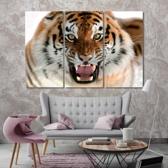 Tiger contemporary canvas wall art