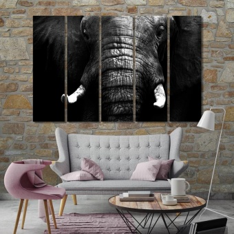 Elephant close up black and white canvas paintings