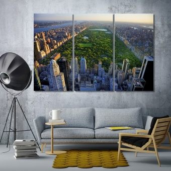 Central Park in Manhattan wall decor