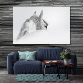 White horse framed canvas wall art, black and white artwork